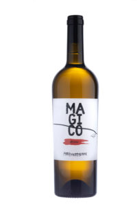 magico ariddu vino naturale