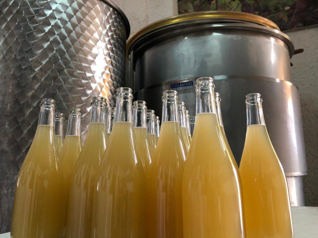 foddre 2019 vino naturale